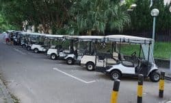 expensive golf carts