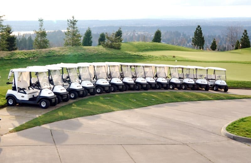 Golf Cart Brands We List The Top 5 Brands Of Today Golf Carts For Sale